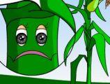 小草为什么长不粗