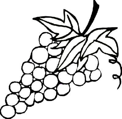 水果简笔画20张
