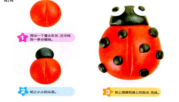 飘虫金龟子(橡皮泥)